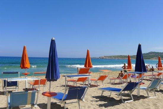 Hotel Serenada : Chaises longues sur la zone privée de la plage