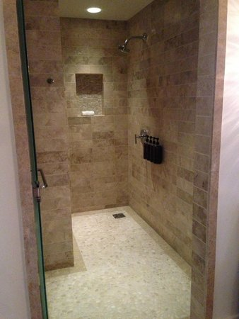 The Ritz-Carlton, Rancho Mirage: Great shower