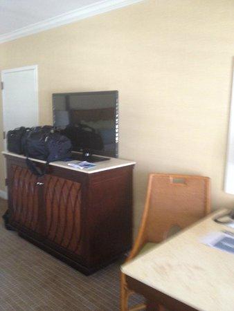 Hotel del Coronado : TV and Mini bar