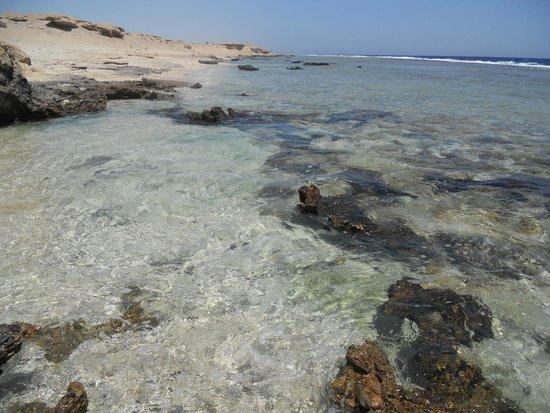 LTI Akassia Beach : La plage