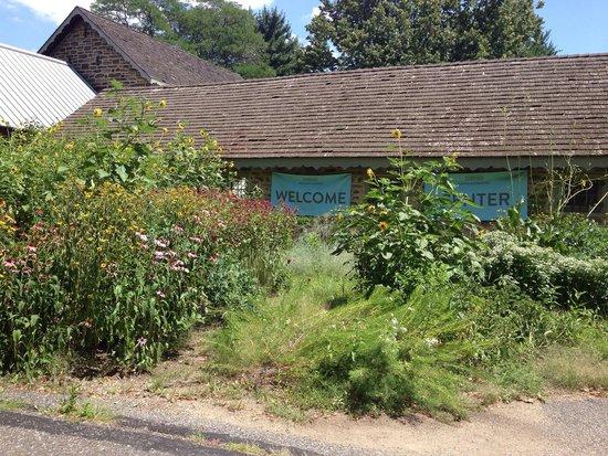 Philly Skyline Picture Of Bartram 39 S Garden Philadelphia Tripadvisor