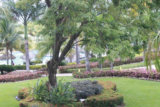 ClubHotel Riu Ocho Rios: Gardens