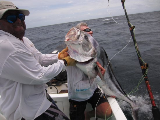 Papagayo Gulf Sport Fishing - North Pacific Tours: 80+lb rooster fish