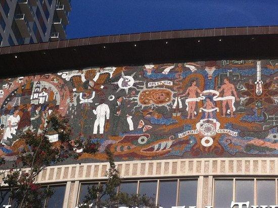 Rio San Antonio Cruises : Wall Mural
