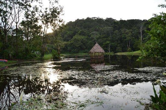 Maquenque Eco-Lodge: Natursee zu paddeln