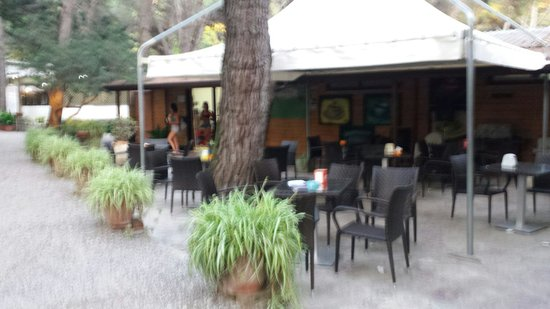 Camping Pineta Club