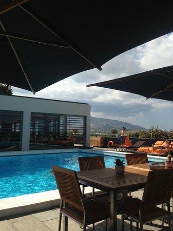 President Hotel: Hotel pool