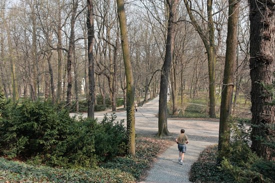 Parc Łazienki : Lazienki Park