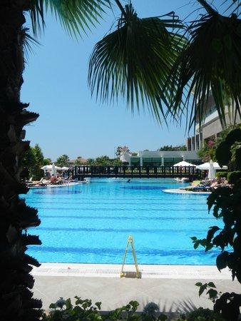 Alba Royal Hotel: бассейн