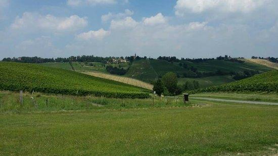Italian Days Food Experience: Winery