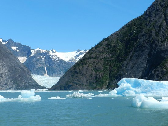 Whale Song Cruises : Glacier from distance