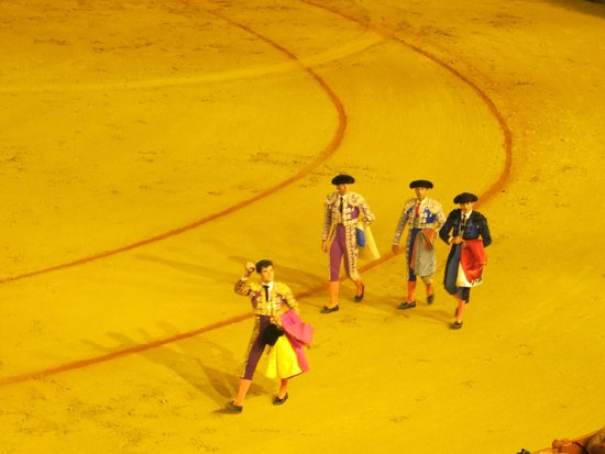 Plaza de Toros de la Maestranza : Show 8
