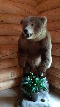 Alaska's Wasilla Bed and Breakfast: Lori's Grizzlie