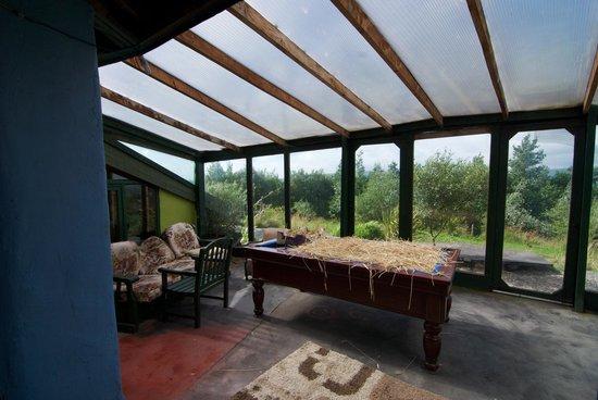 Gyreum Eco Lodge : Cat's Room