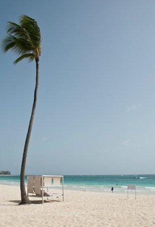 Paradisus Punta Cana Resort: Strand