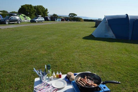 Trevayne Farm Caravan and Camping: Tenby Field