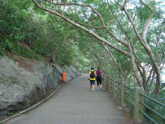 Claudio Coutinho Trail: Vista da Pista Claudio Coutinho