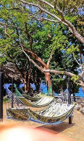 Casa Marina Reef: Hotel