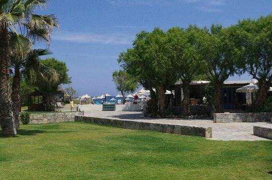 Agapi Beach Hotel: vu sur la plage depuis bungalow