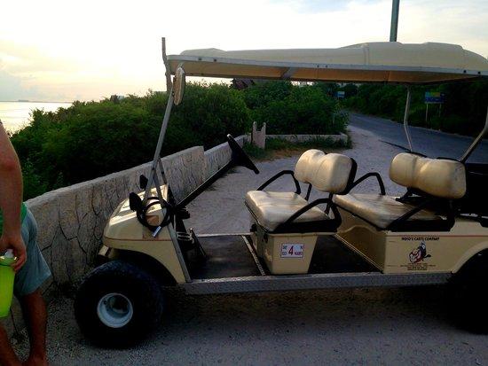 Golf Carts Indios: Large Cart #6