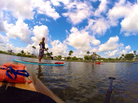 Three Brothers Boards Dolphin and Manatee Paddle Board Tours: Blue bird sky's & paddle boarding for the first time.