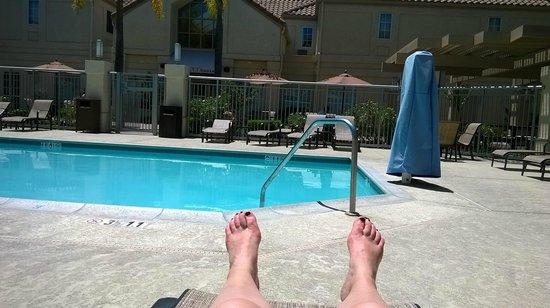 Hyatt House Los Angeles/El Segundo: Pool