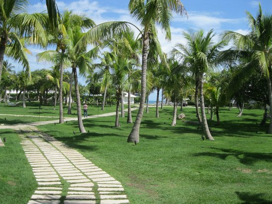 The Cove Eleuthera: The grounds