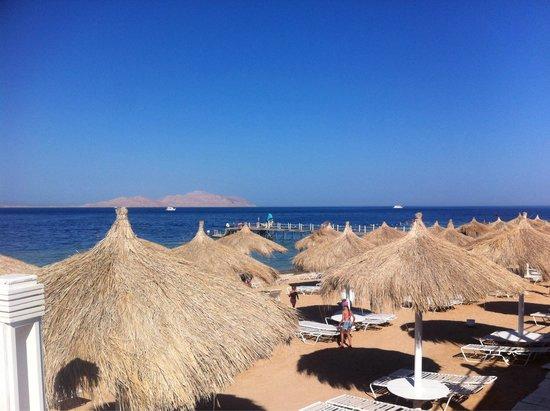 Sunrise Grand Select Arabian Beach Resort: Вот оно)��