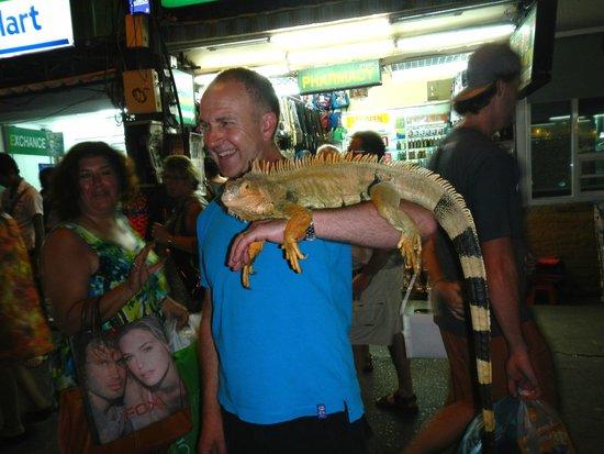 Bangla Road : Iguana for hire