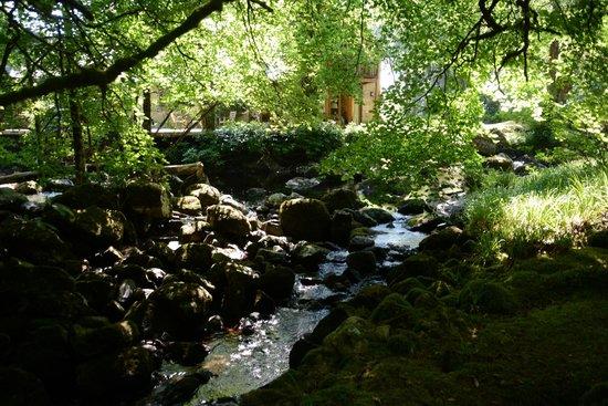 Gidleigh Park Hotel: River garden