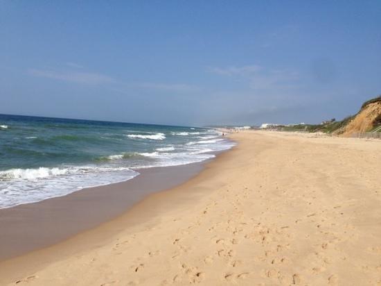 Ocean Surf Resort: Beautiful midday walk
