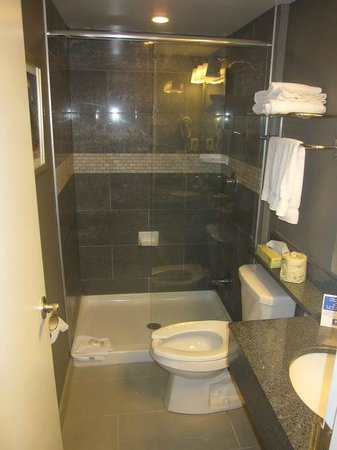 Comfort Inn City Centre: Bathroom
