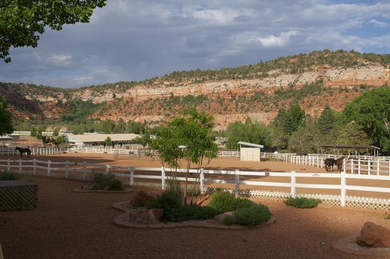 Best Friends Animal Sanctuary Cottages and Cabins: The view of the horse pasture from our cottage.