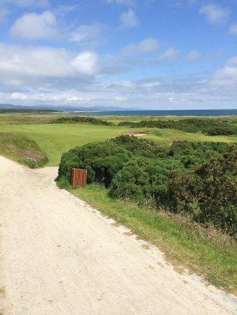 Royal Dornoch Golf Club: Course View 3