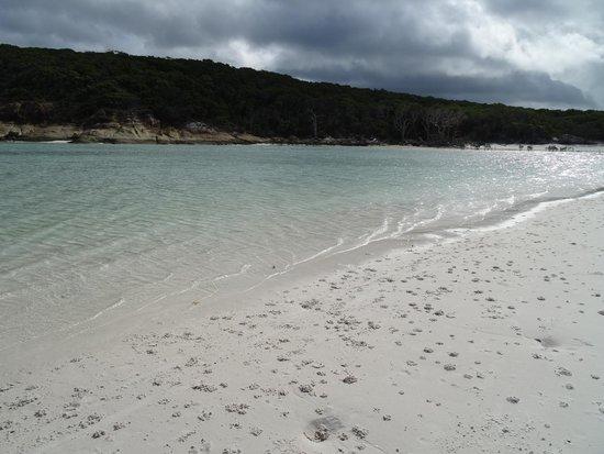 Cruise Whitsundays: Whitehaven Beach