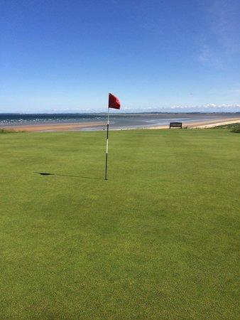 Royal Dornoch Golf Club: Green