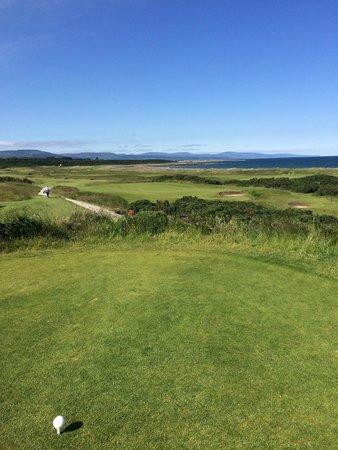 Royal Dornoch Golf Club: Course View 2