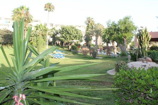 Club Marmara Agadir : Espaces verts