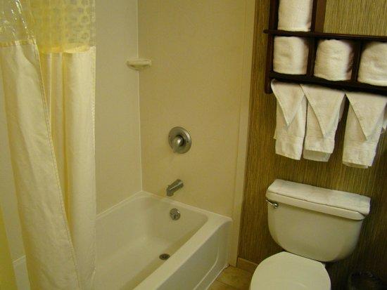 Hampton Inn Scranton at Montage Mountain : bathroom