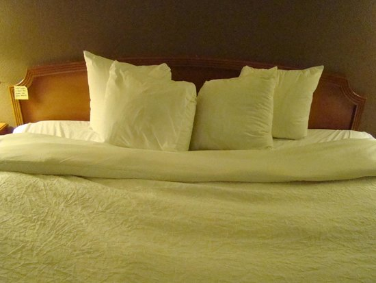 Hampton Inn Plymouth Meeting: Smallest pillows ever on a king size bed