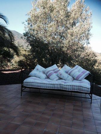Maison Rose : The terrace