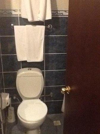 Ring Hotel: tuvalet