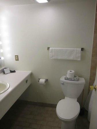 The Business Inn & Suites: Bathroom