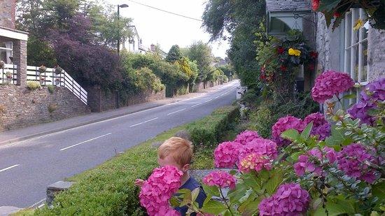 Culloden Farmhouse: Road by Culloden
