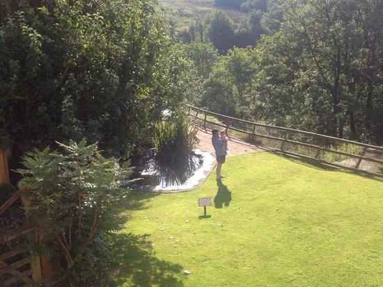 Llanerchindda Farm: Room with a view