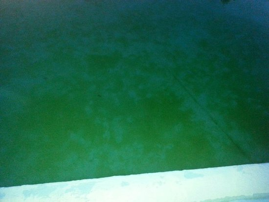 Lancaster Family Resort : Dirty outdoor pool