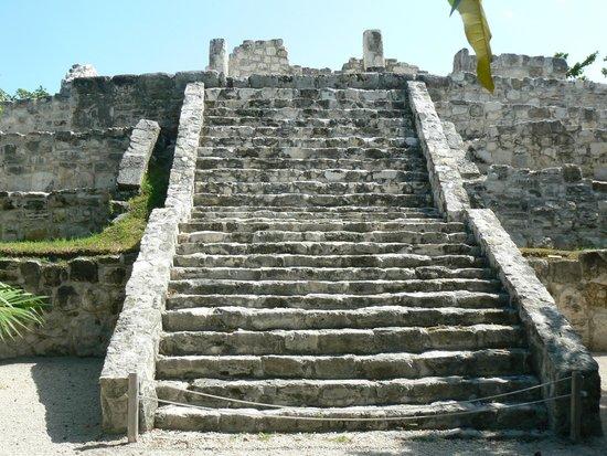 Museo Maya de Cancun: mayan ruin in garden