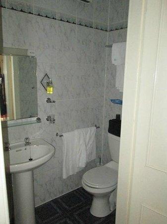 Albion Hotel: Bathrrom Toilet
