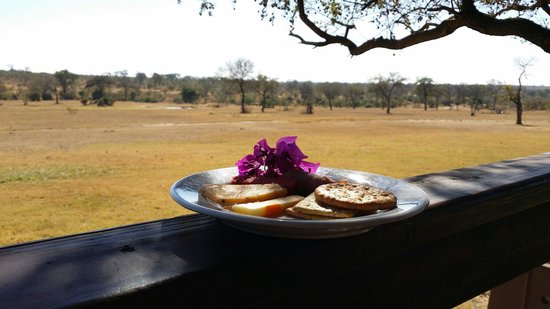 Nkorho Bush Lodge: Lunch by the plains