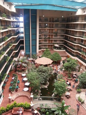 Embassy Suites by Hilton Anaheim North : VISTA DESDE EL ULTIMO PISO ..